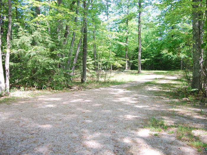 Little Bay de Noc Campground site #25