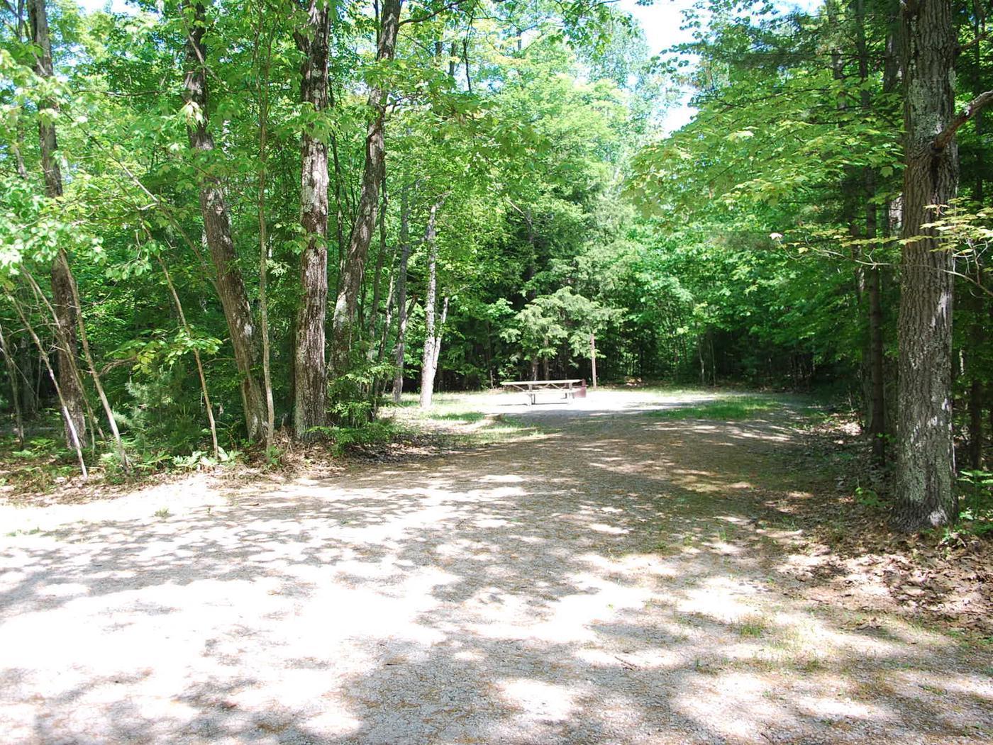 Little Bay de Noc Campground site #28