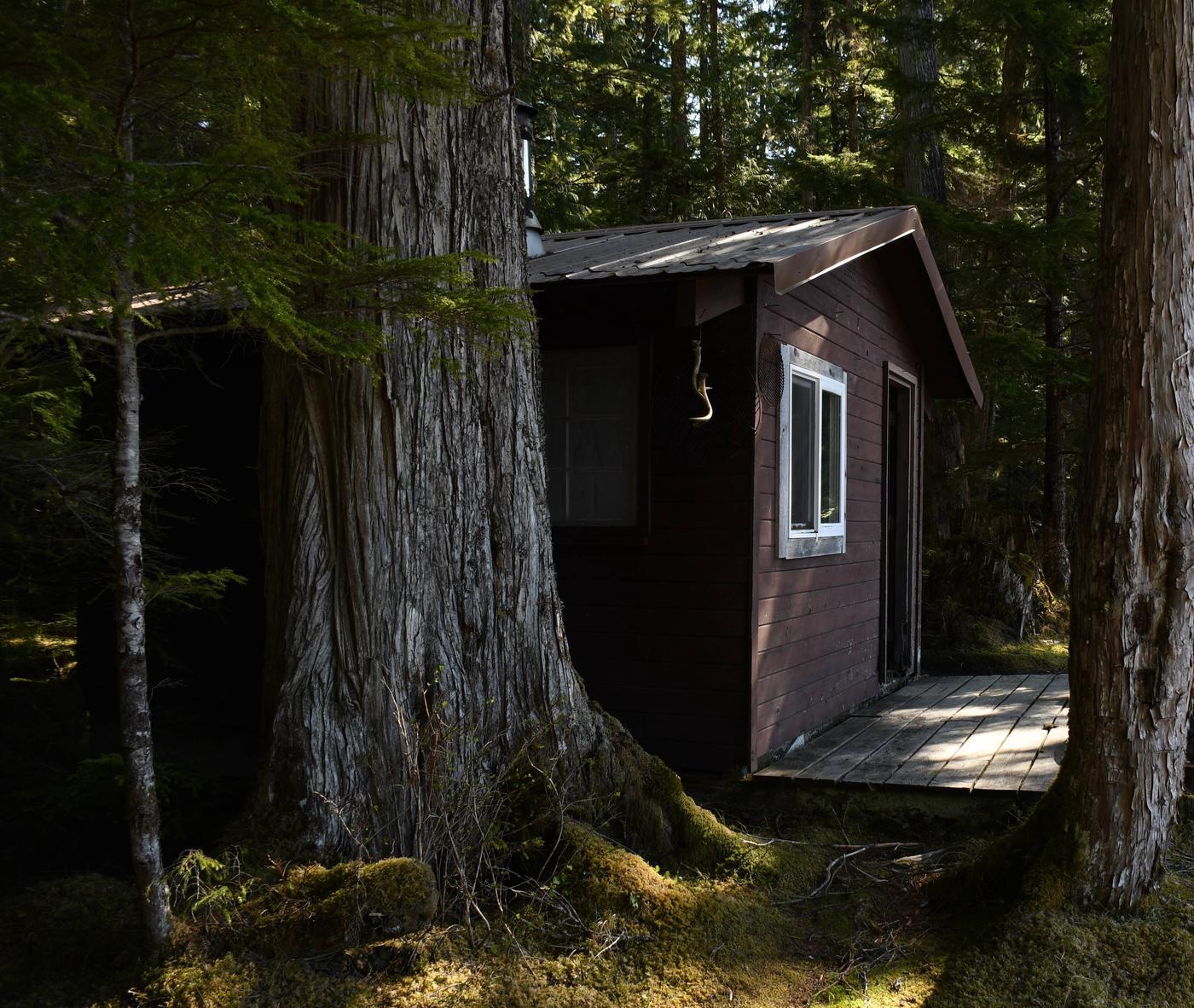 Salmon Bay Lake Cabin