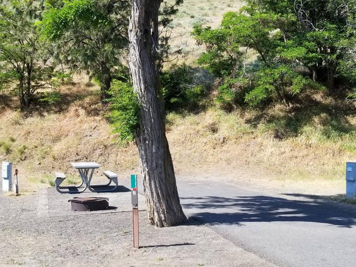LePage Park Site 11
