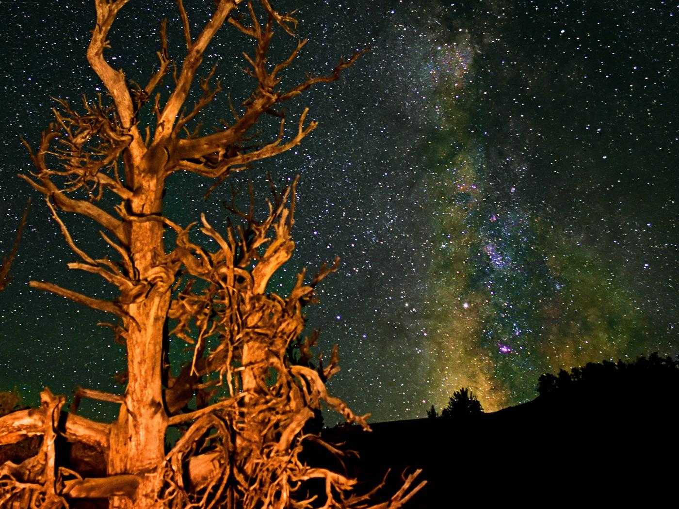 Night Skies at Craters of the Moon