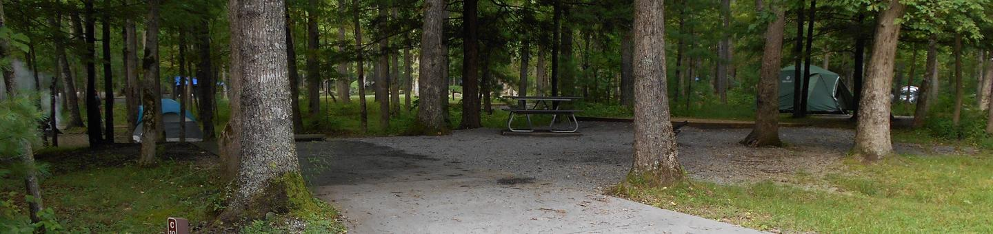 Cades Cove Campground C10C10 Tent Only Generator Free Area