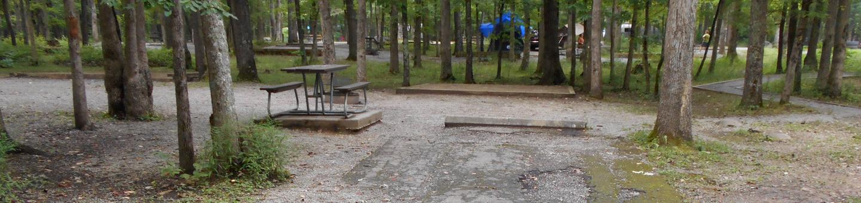 Cades Cove Campground C34C34 Generator Free Area