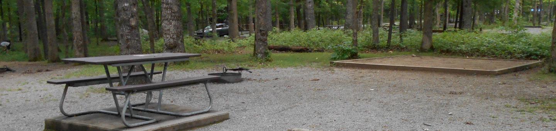 Cades Cove Campground C38C38 Generator Free Area