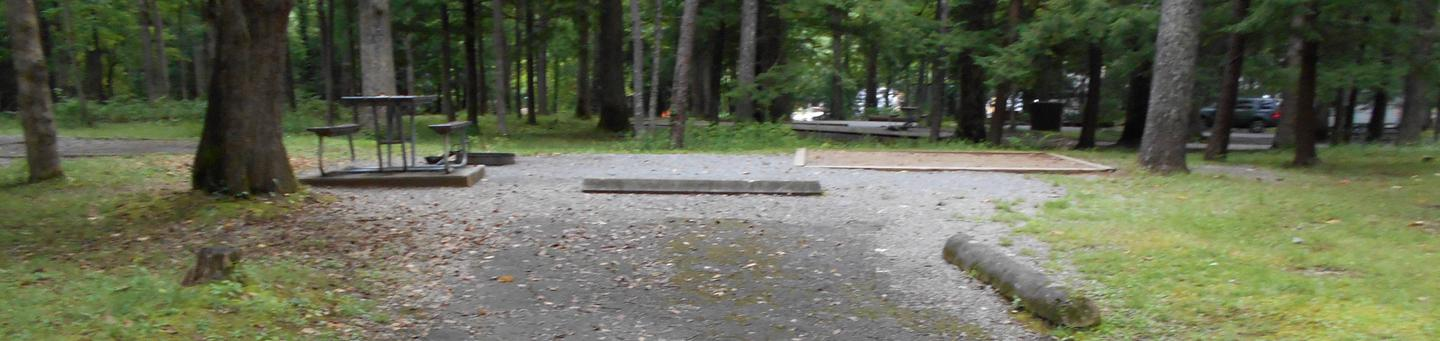 Cades Cove Campground C41C41 Tent Only Generator Free Area