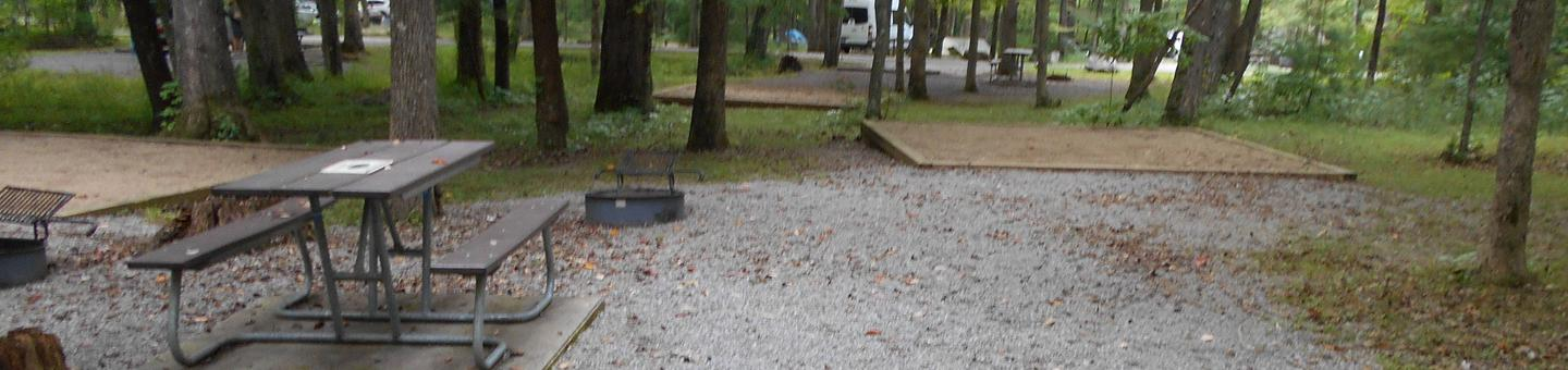 Cades Cove Campground C68C68 Tent Only Generator Free Area
