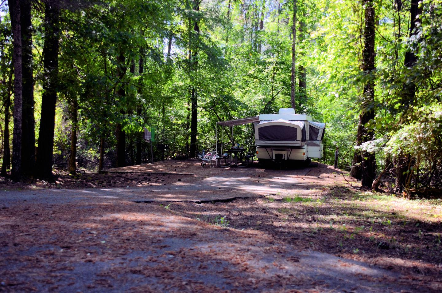 Driveway entrance/slope, utilities-side clearance.McKinney Campground, campsite 58.
