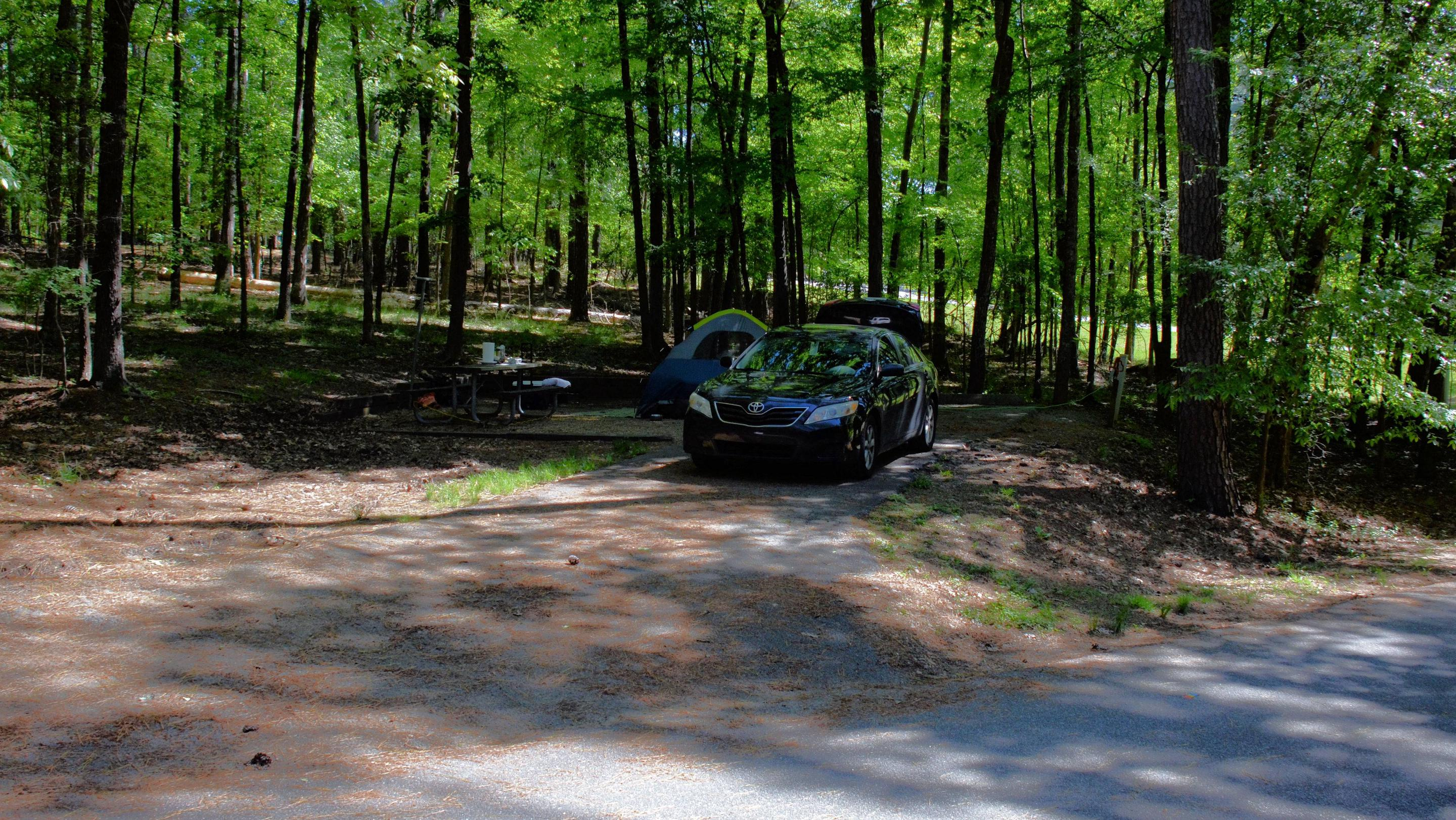 Driveway entrance/slope, utilities-side clearance.McKinney Campground, campsite 59