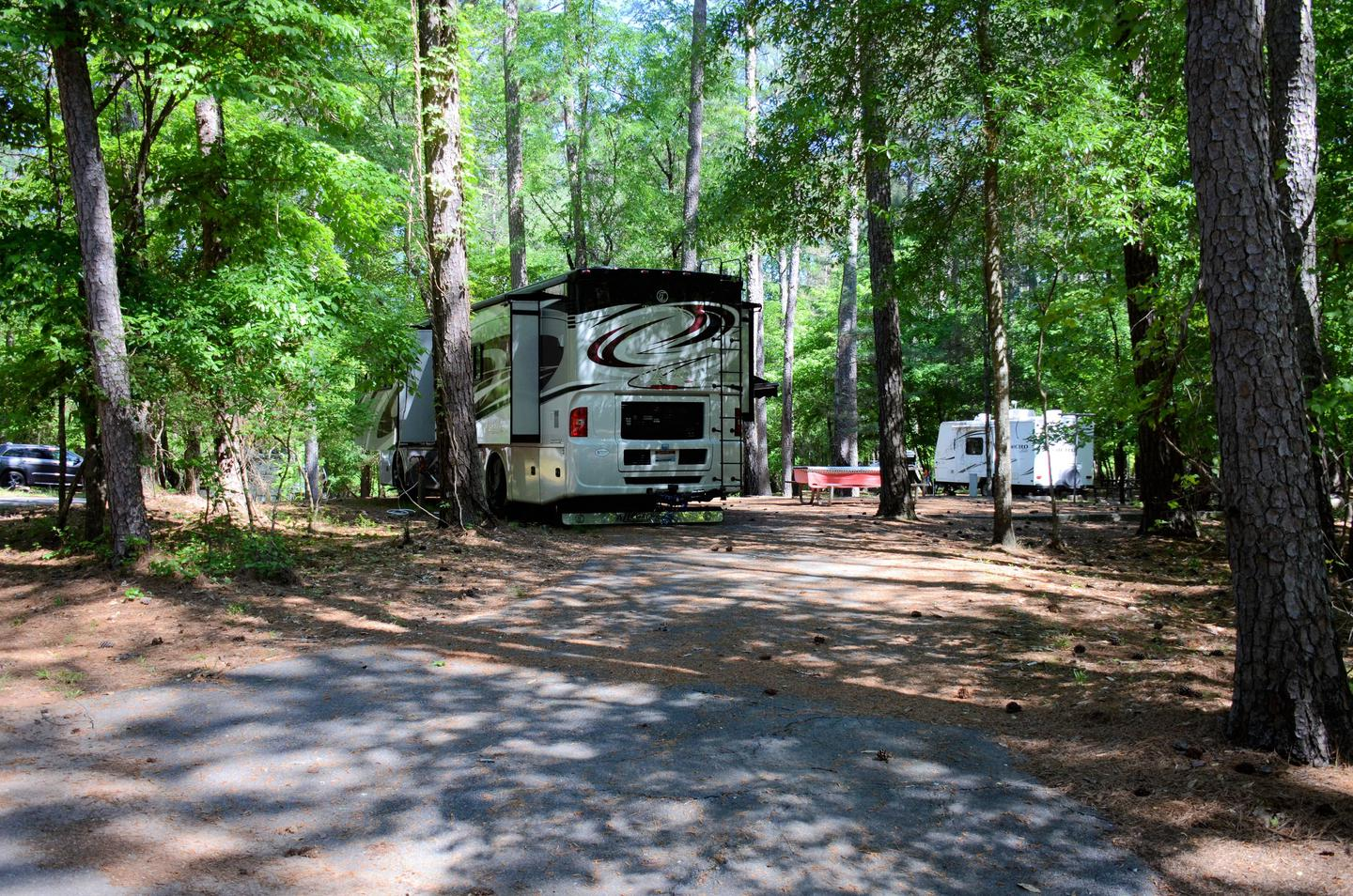 Pull-thru entrance, utilities-side clearance.McKinney Campground, campsite 62.