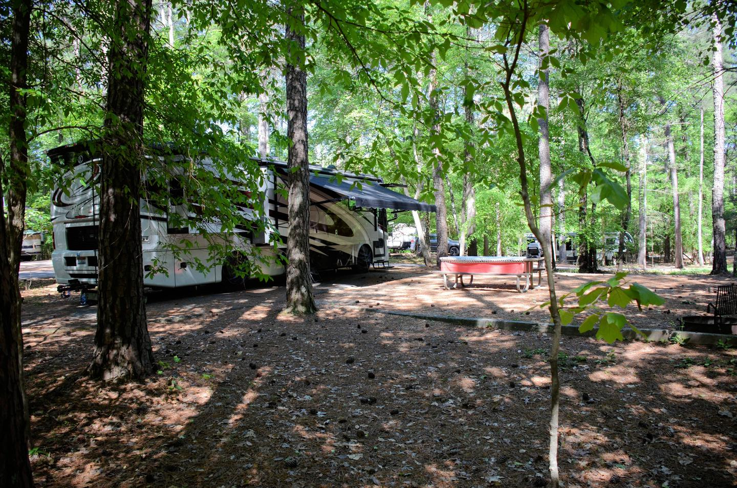 Awning clearance, amenities.McKinney Campground, campsite 62.