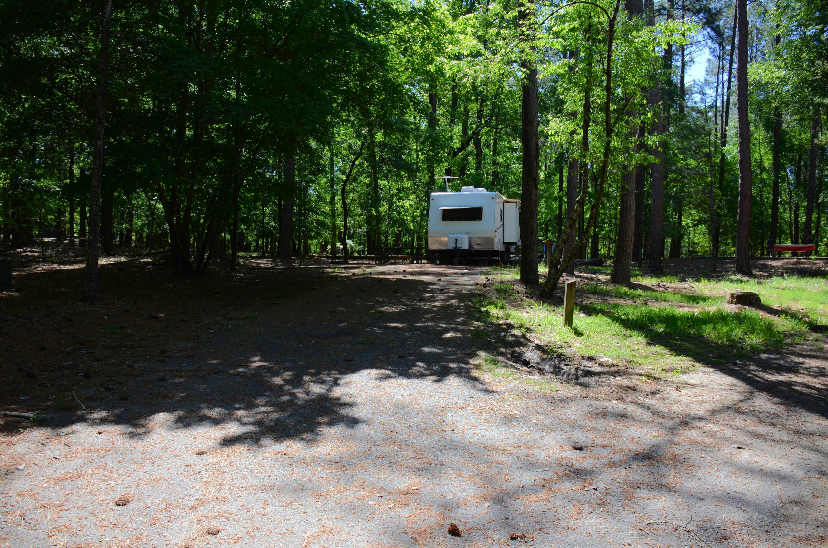 Driveway entrance angle/slope, tree branch clearance.McKinney Campground, campsite 66.