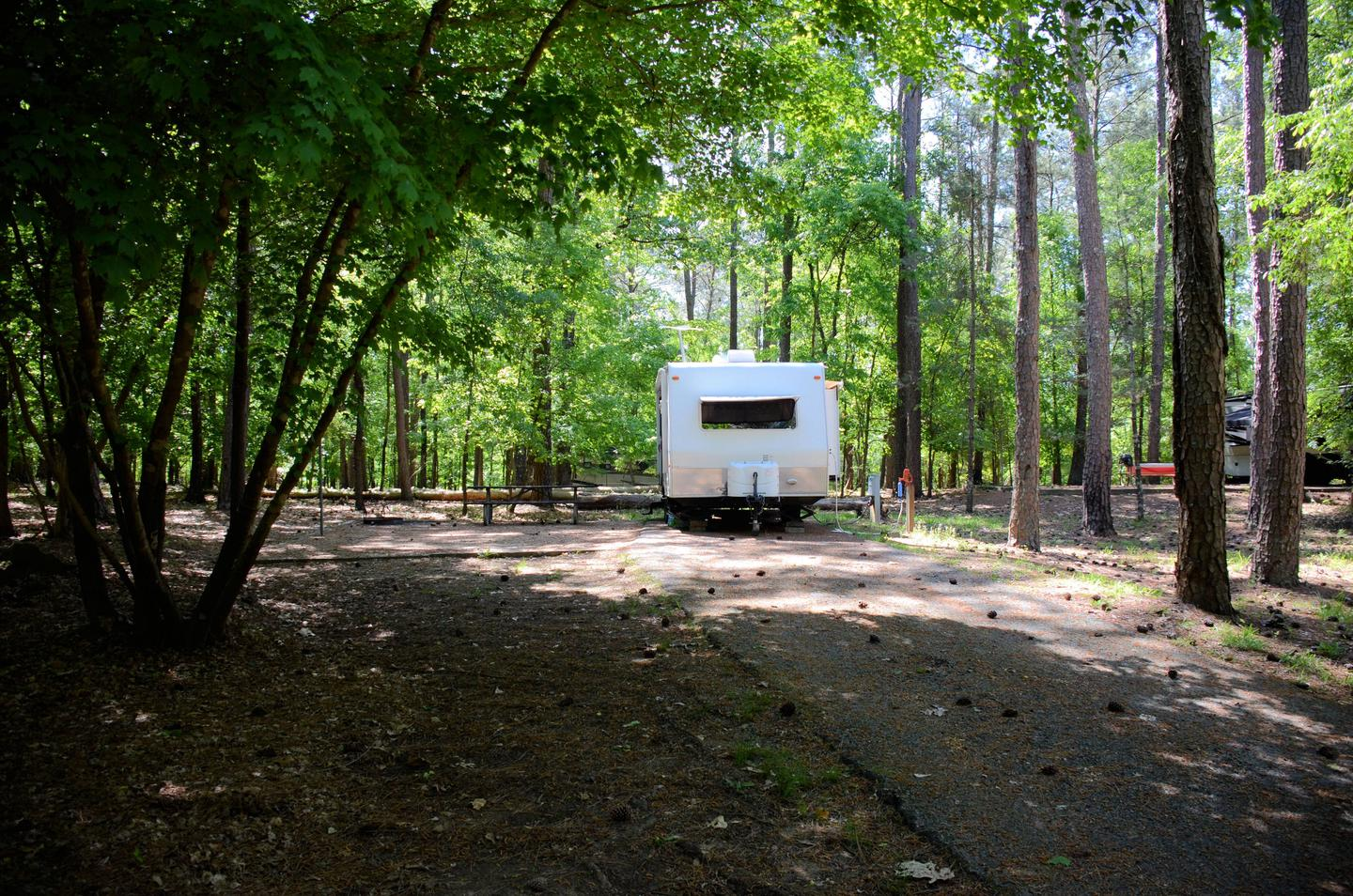 Driveway slope, utilities-side clearance, awning-side clearance.McKinney Campground, campsite 66.