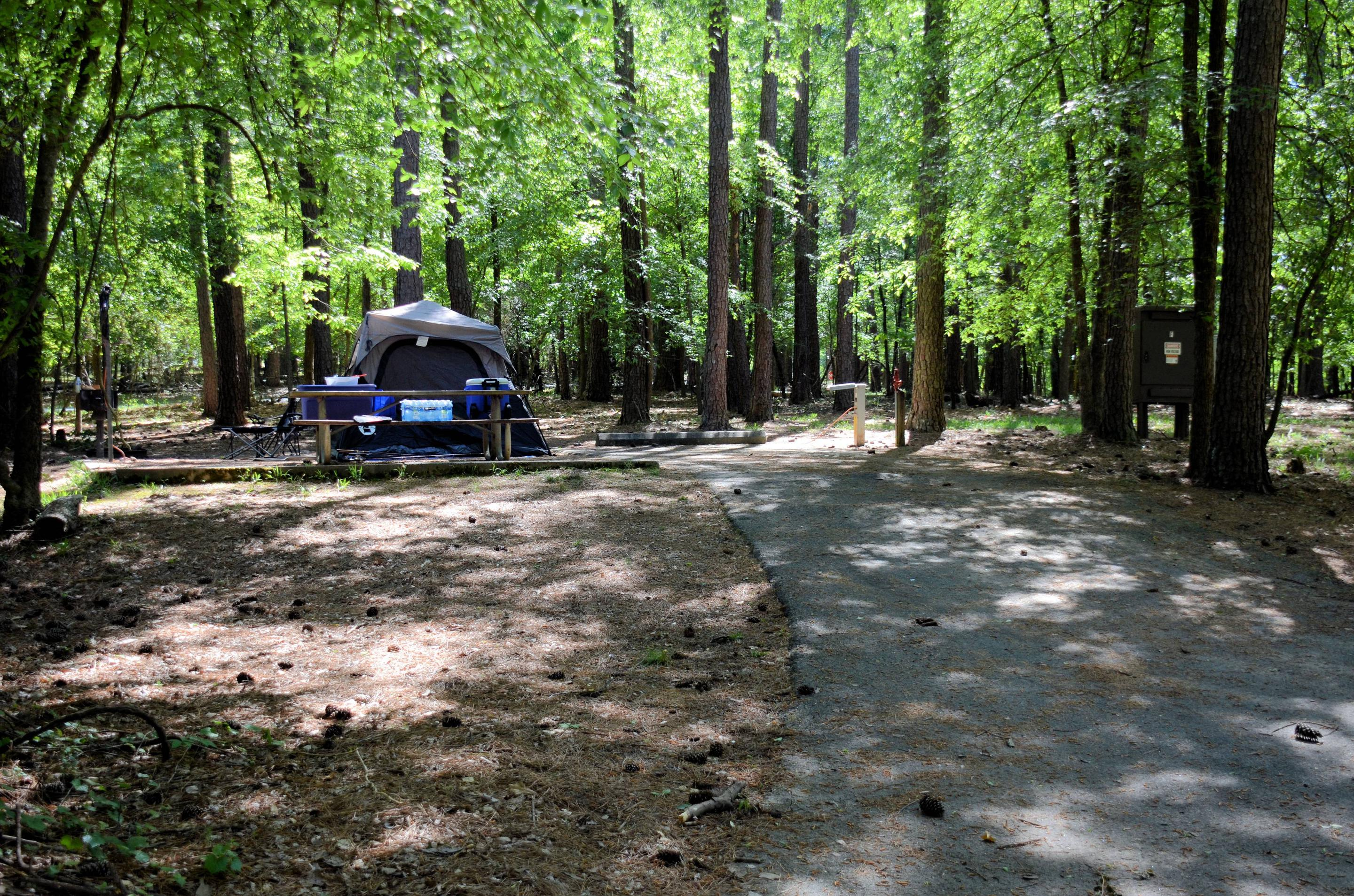 Driveway slope, utilities-side clearance, awning-side clearance.McKinney Campground, campsite 68