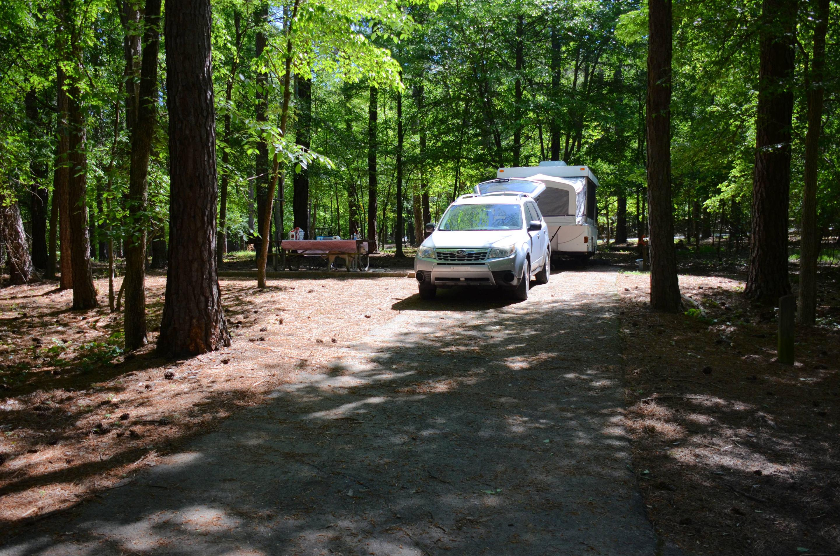 Driveway slope, utilities-side clearance, awning-side clearance.McKinney Campground, campsite 69.
