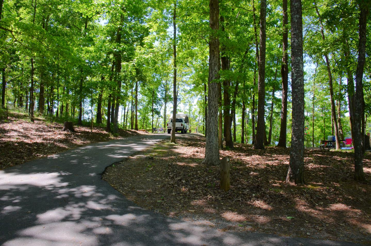Driveway entrance/slope, utilities-side clearance.McKinney Campground, campsite 92.