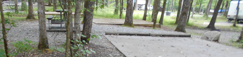 Cades Cove Campground C23 Generator FreeC23