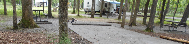 Cades Cove Campground C24 Generator FreeC24