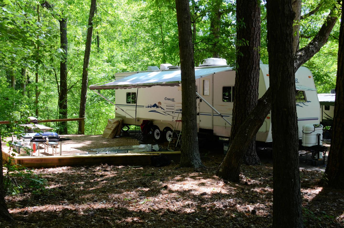 Campsite view, awning-side clearance.McKinney Campground, campsite 101.