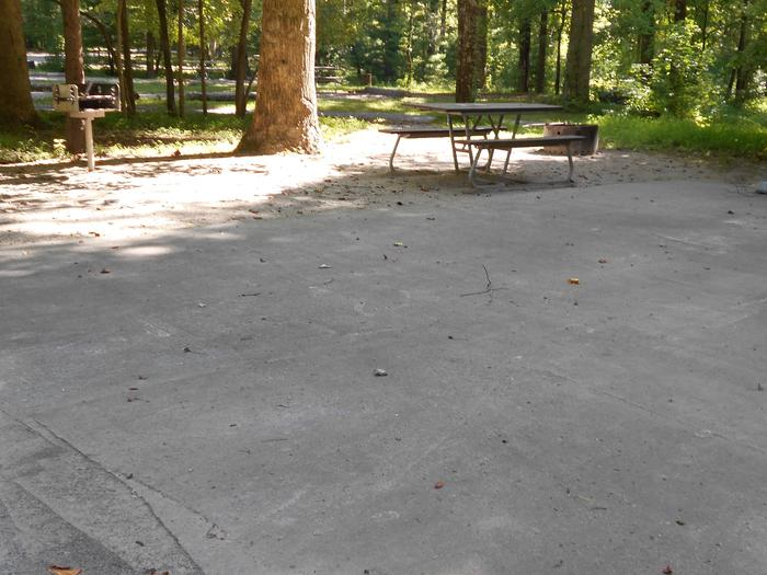 Cades Cove Campground A04A04 Accessible Generator Site