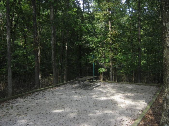 Site 79