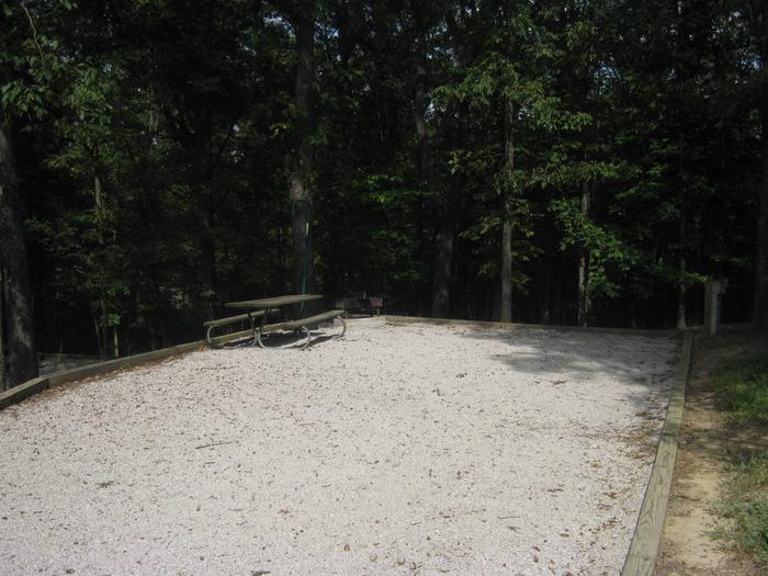 Site 81