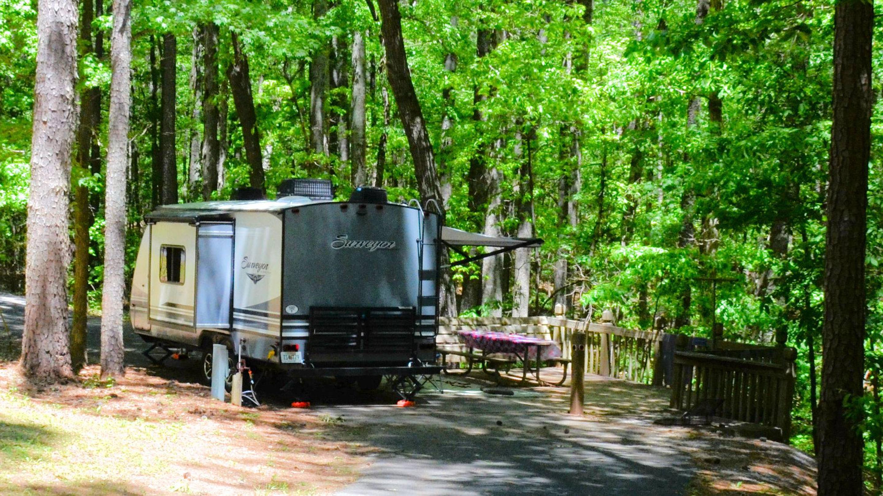 Campsite view, utilities-side clearance.McKinney Campground, campsite 138.