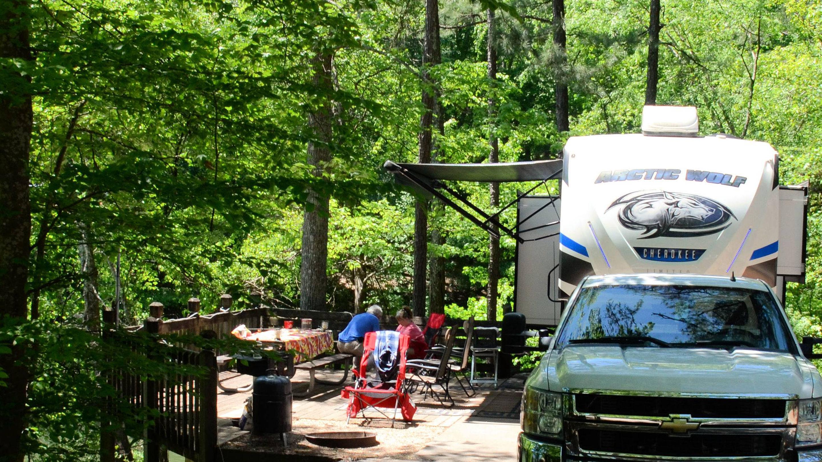 Campsite view, awning-side clearance.McKinney Campground, campsite 141.