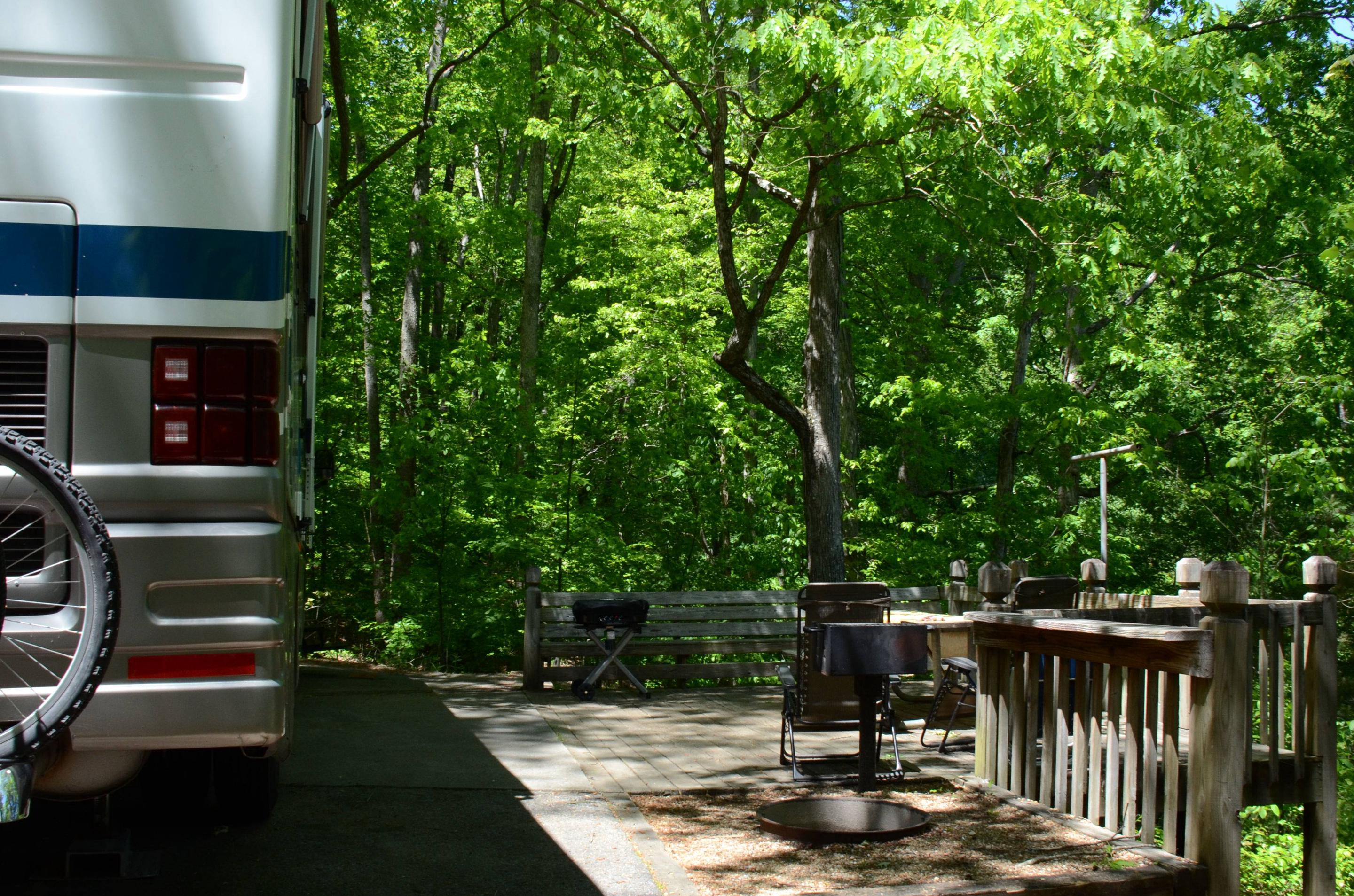 Campsite view, awning-side clearance.McKinney Campground, campsite 149.