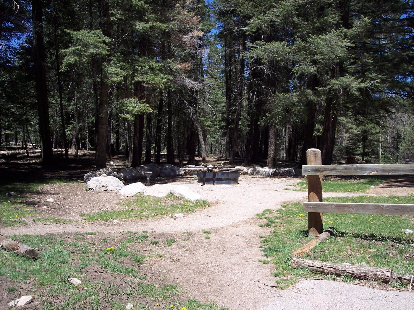 Black Bear Group group site fire pit.