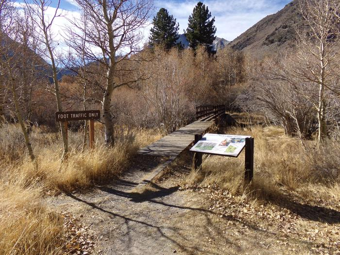 Convict Lake Campground trail to fishing creek in campground.