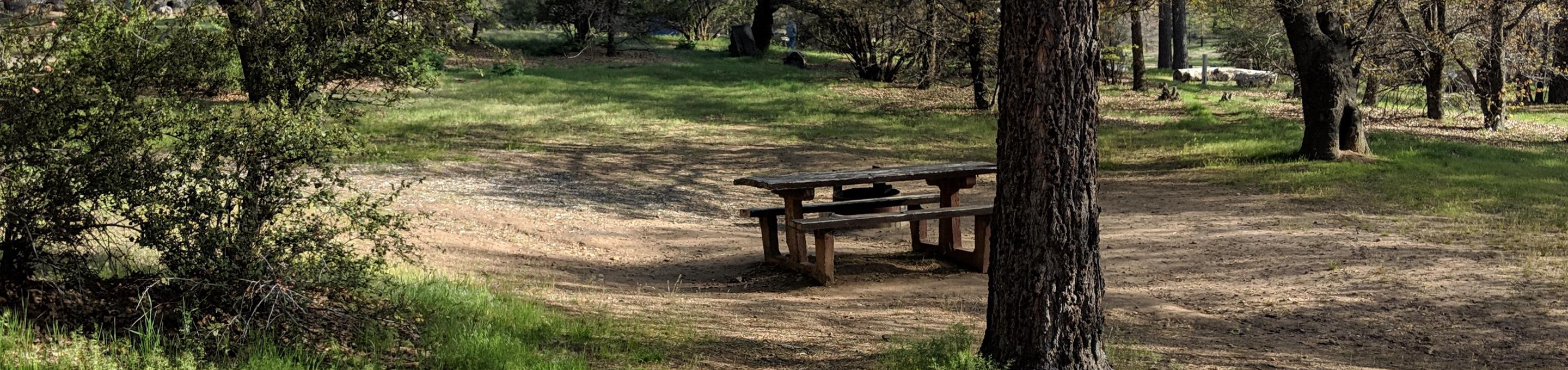 Laguna Campground site #29 featuring picnic table and camping space.