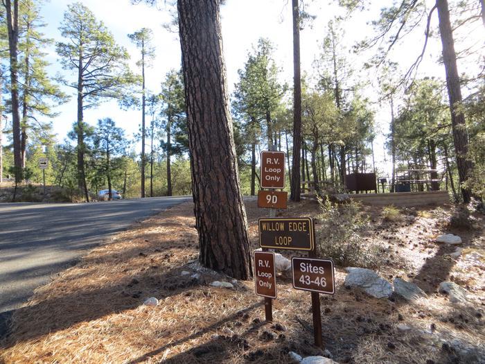 Willow Edge Loop.Rose Canyon Lake Campground