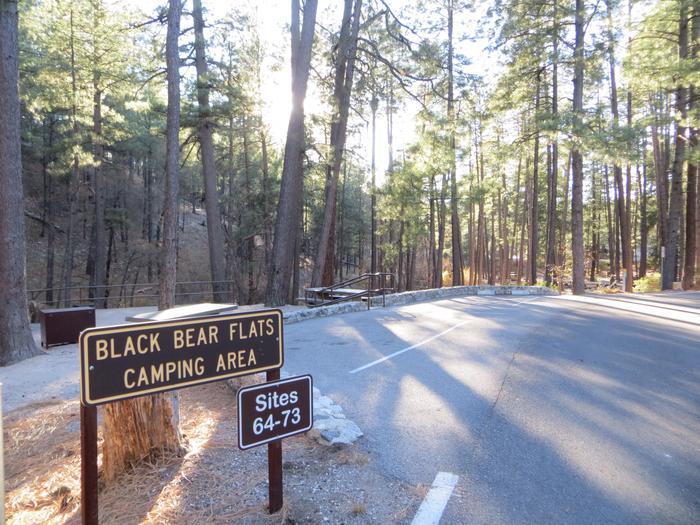 Black Bear Flats Rose Canyon Lake Campground