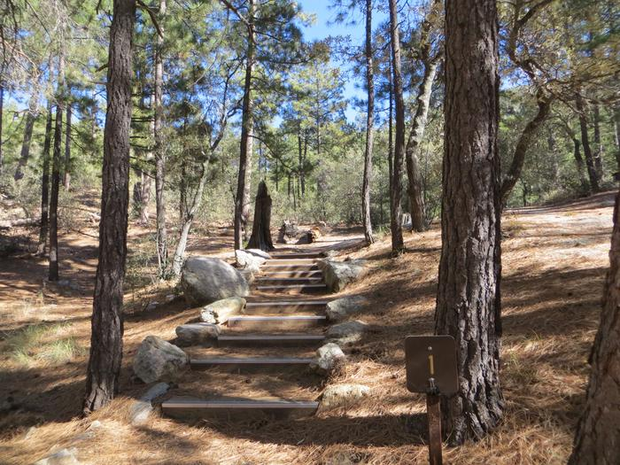 Path to site 1.Rose Canyon Lake Campground