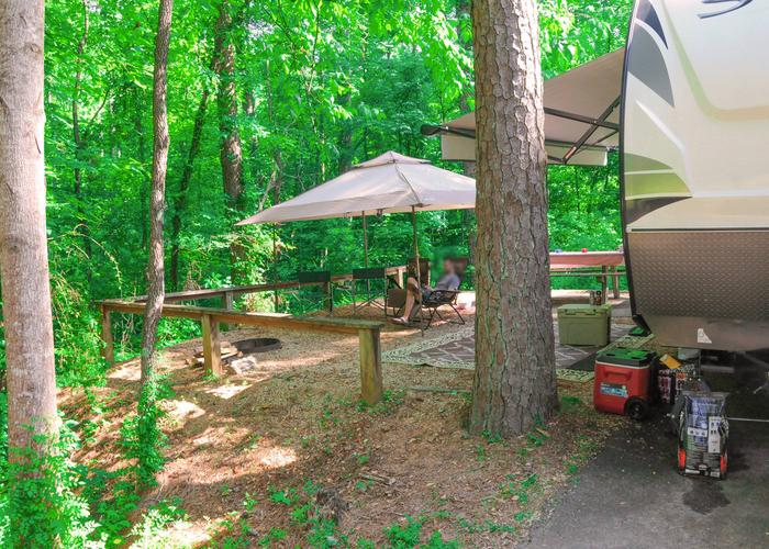 Campsite view, awning-side clearance.Sweetwater Campground, campsite 17.