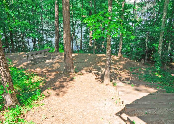 Campsite view, steps down to tent pad.Sweetwater Campground, campsite 25.