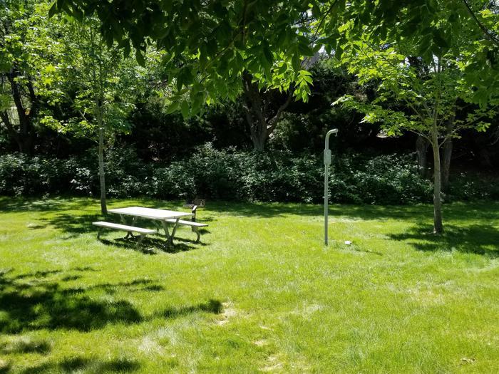 LePage Park Tent Site 16