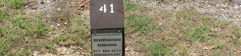 Site #41 Point Campground