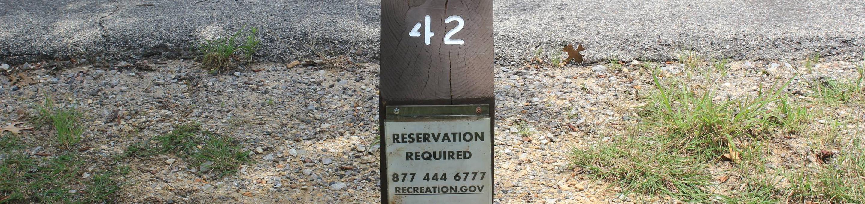 Site #42 Point Campground