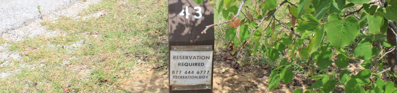 Site #43 Point Campground