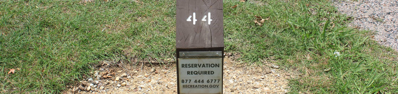 Site #44 Point Campground