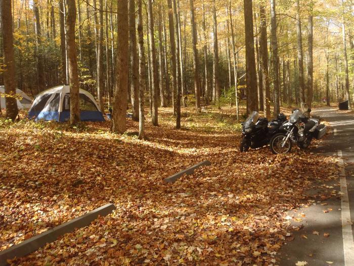 cosby campsite