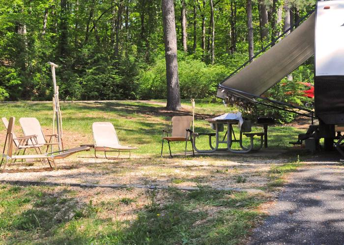Campsite view, awning-side clearance.Sweetwater Campground, campsite 32.