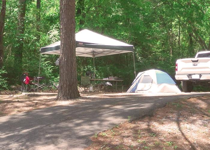 Driveway slope, awning-side clearance.Sweetwater Campground, campsite 51.