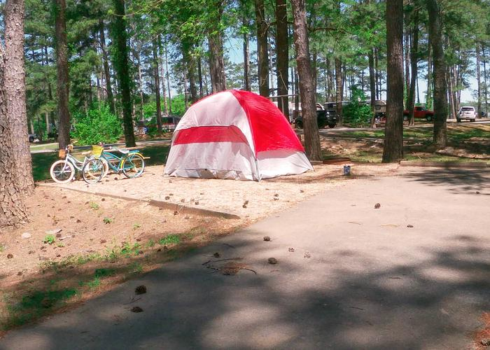 Campsite view.Sweetwater Campground, campsite 57.