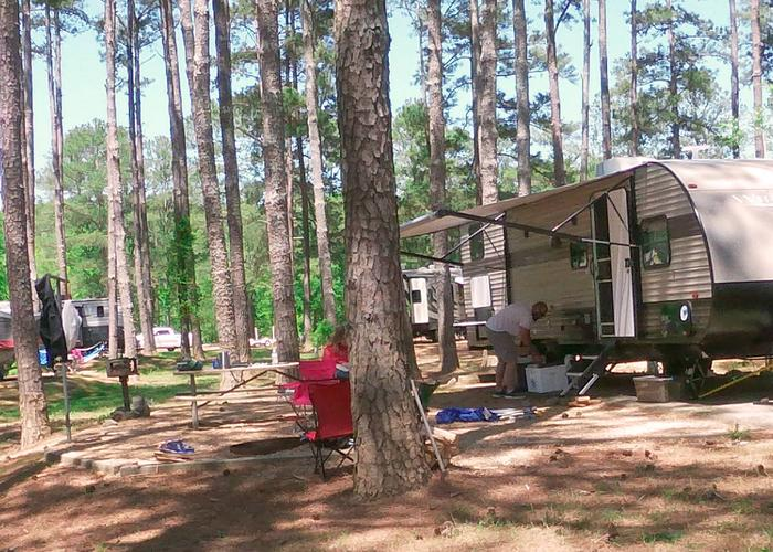 Campsite view, awning-side clearance.Sweetwater Campground, campsite 60.