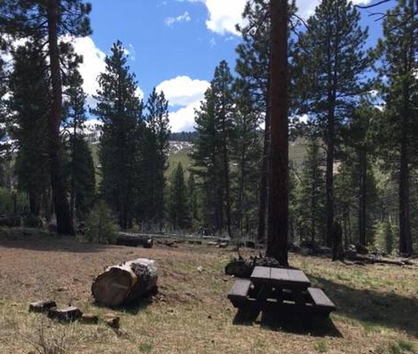 Blue Lake Campground Group Site