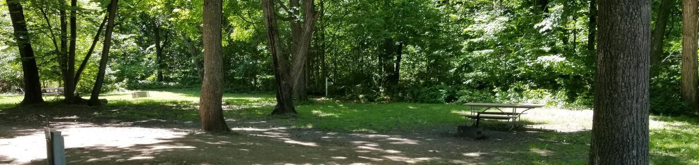 Campsite #36