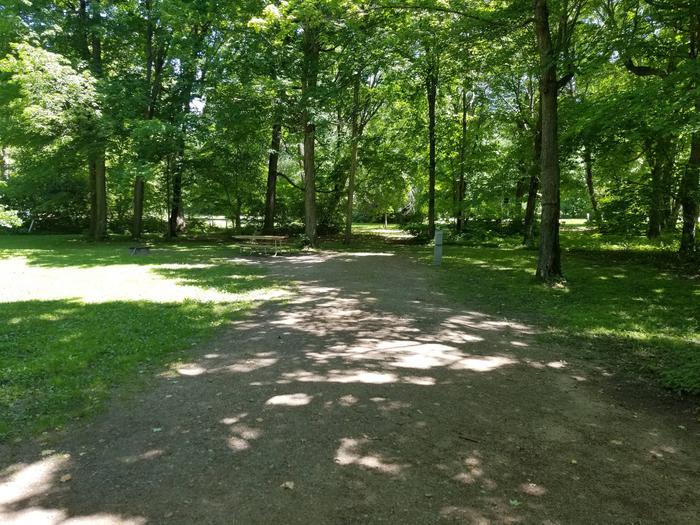 Campsite #37