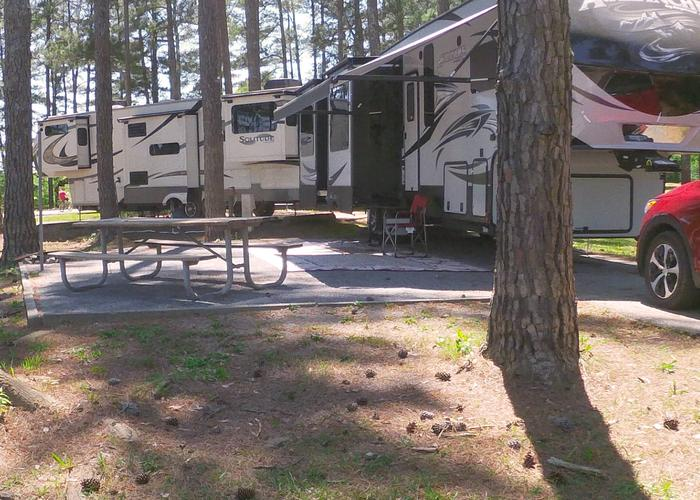 Campsite view, awning-side clearance.Sweetwater Campground, campsite 63.